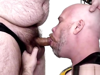 mature Rimmed reside gets his asshole barebacked gay